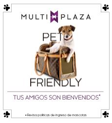 Mascotas card web